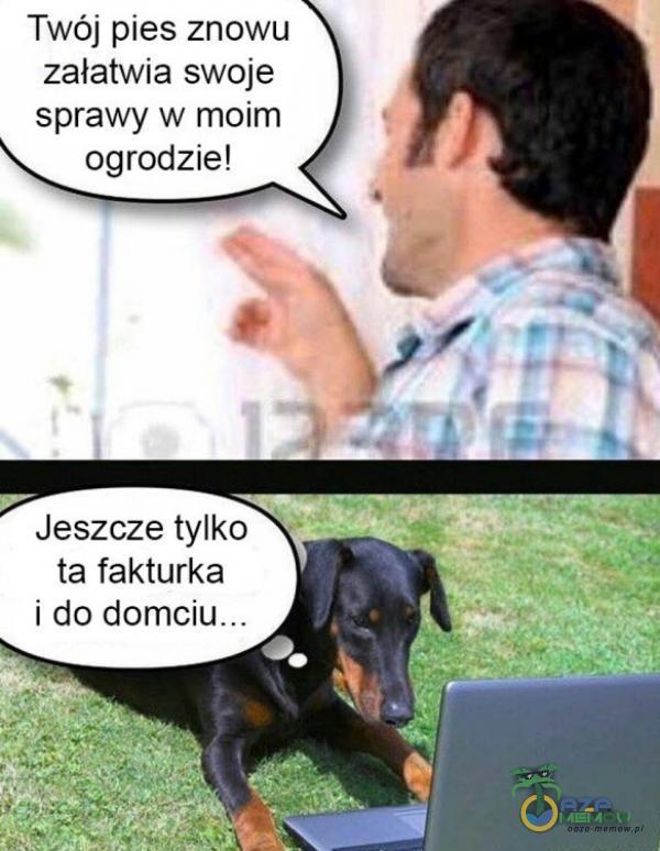 Twój pies znowu załatwia swoje sprawy w moim ogrodzie! Jeszcze tylko ta fakturka i do domciu __