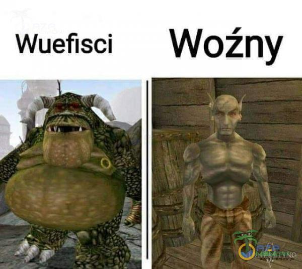 Wuefisci Woźny -nNCv