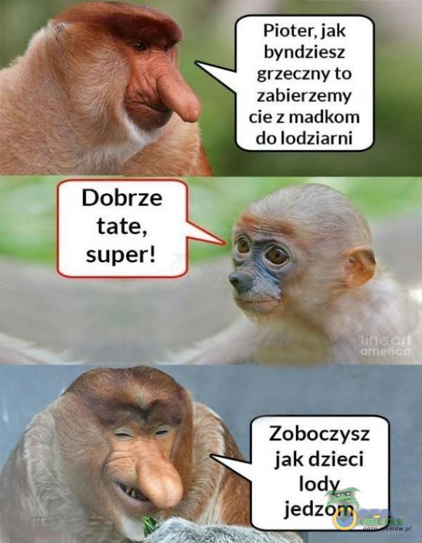 """Fioreniak byńdzlesx « grzeczny to zabierzemy ci e z madkom da lodzia mi * . """"I. -.—. . ~. Zobaczysz .I iak dlleci """" lady : _ * ]edzurn"""
