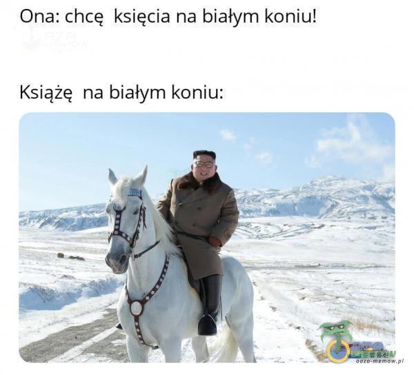 Ona: chcę księcia na białym koniu! Książę na białym koniu: