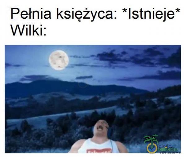 Pełnia księżyca: *lstnieje* Wilki: