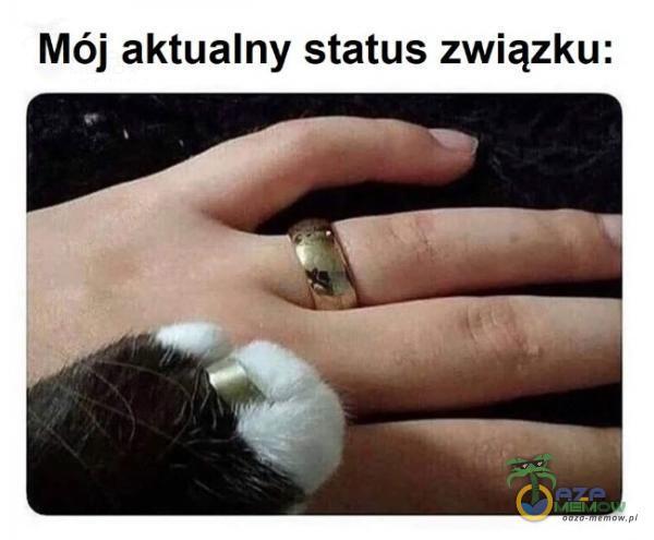 Mój aktualny status związku: