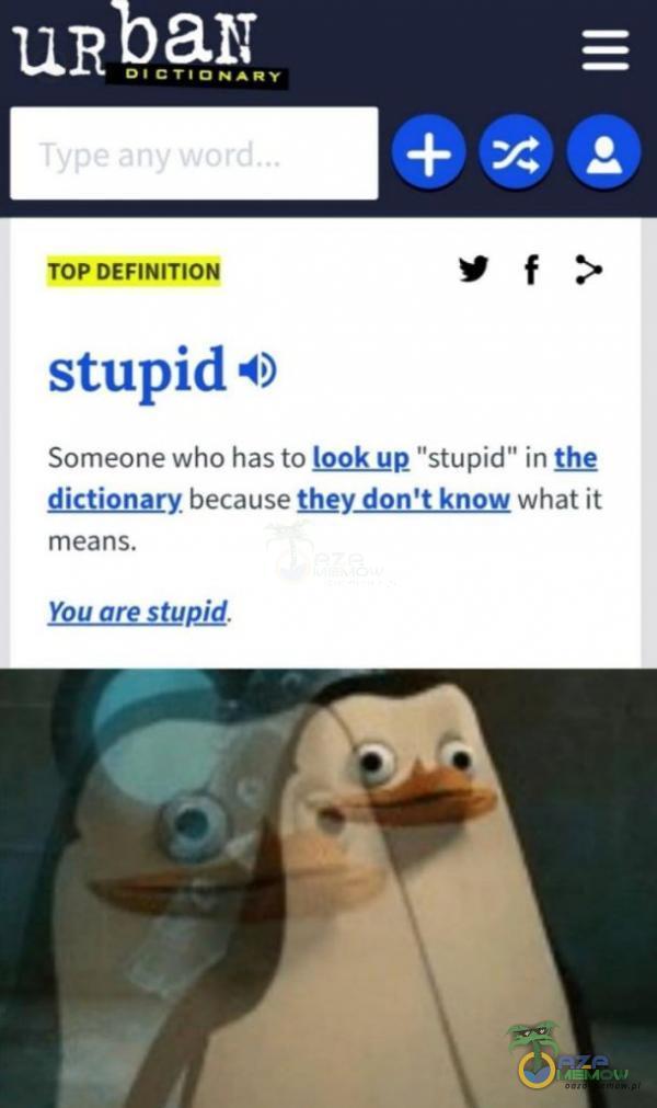 IWEzĄSj= JU = DIDTIYNANY SamebnE wką has ła laglt up stupid [In te dictionary becaus ion t know what it means.