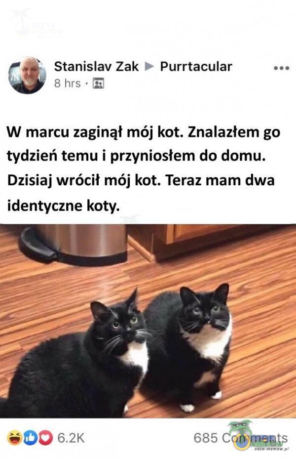 a Mrs. [z] 2 8 Stanislav Zak © Purrtacular ... W marcu zaginął mój kot. Znalazłem go tydzień temu i przyniosłem do domu. Dzisiaj wrócił mój kot. Teraz mam dwa identyczne koty. w (DO 62k 685 Comments