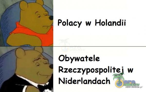 * Polacy w Holandii Obywa rele _ Rzeczypospoliłej w