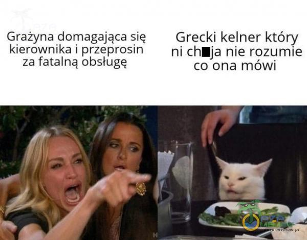 Grażyna domagająca się Grecki kelner który kierownika i przeprosin ni chiaja nie rozumie za fatalną obsługę co ona mówi
