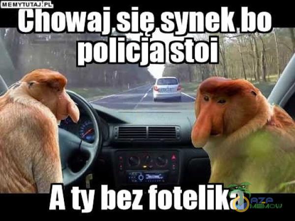 y f-› l Ą _ H __ z Atv bezfotelika
