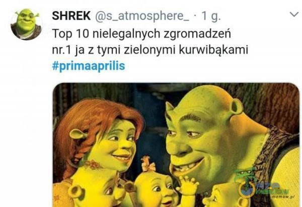 SHREK (Ca _stmosphere_ | q u Top 10 nielegalnych zgromadzeń ńr:1 jaz tymi zielonymi kurwibąkamni tprimaspriis