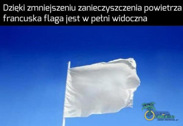 zięki zmniejszeniu zanieczyszczenia powietrza francuska flaga jest w pełni widoczna