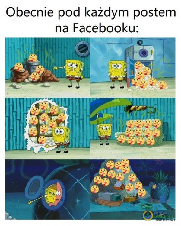 Obecnie pod każdym postem na Facebooku:
