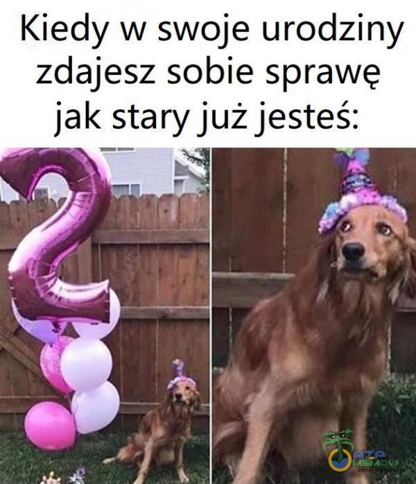 Kiedy w swoje urodziny zdajesz sobie sprawę jak stary już jesteś: