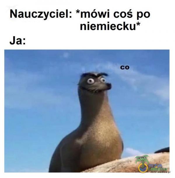 Nauczyciel: *mówi coś po niemiecku* Ja: