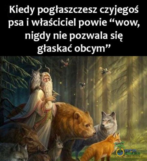 Kiedy pogłaszczesz czyiegoś psa i właściciel powie wow, nigdy nie pozwala się głaskać obcym [. .n 3! .
