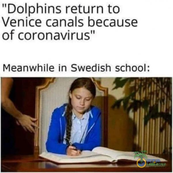 Dolphins return to Venice c***ls because of coronavirus Meanwhile in Swedish school:
