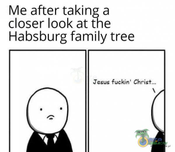 Me after taking a closer look at the Habsburg family tree Jesus fuckin