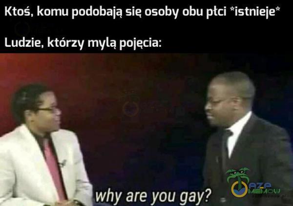"""Ktoś. komu podobaią się osoby obu płci *istnieie"""" Ludzie. którzy mylą pojecia: Jl . why are you gay?"""