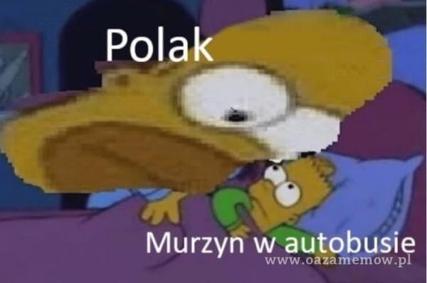 Polak Murzyn w autobusłe