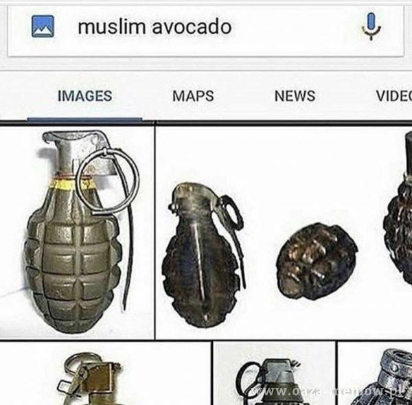 muslim avocado IMAGES MAPS NEWS VIDE(