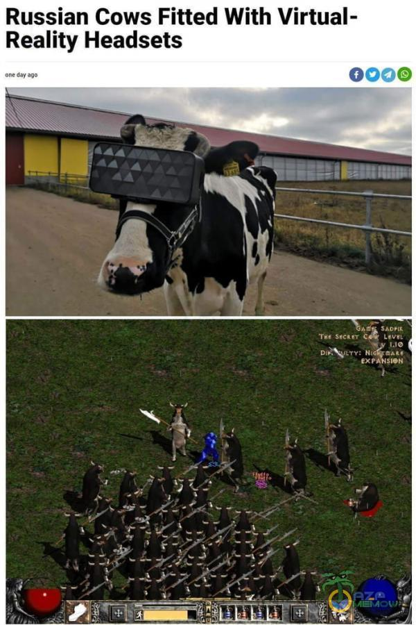 sian Cows Fitted With Vłrwa• ility Headsets 0000