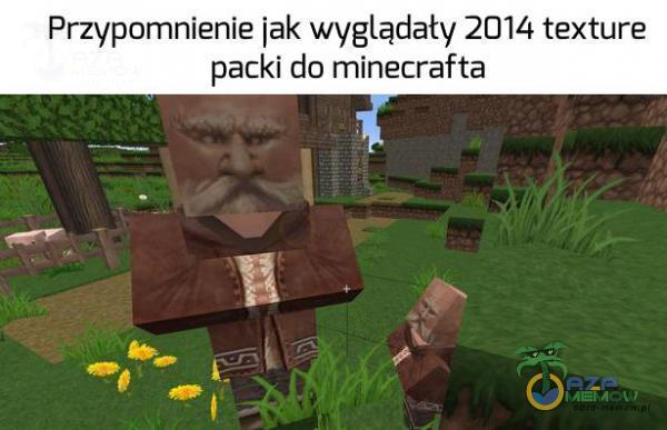 Przypomnienie jak wyglądaty 2014 texture packi do minecrafta