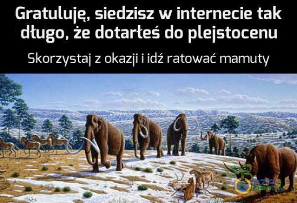 Gratuluie, siedzisz w internecie tak dlugo. że dutarłeś do eistocenu Skorzystaj z ukaz]! I Idź ratować mamuty