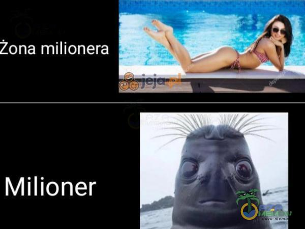 Żona milionera Milioner