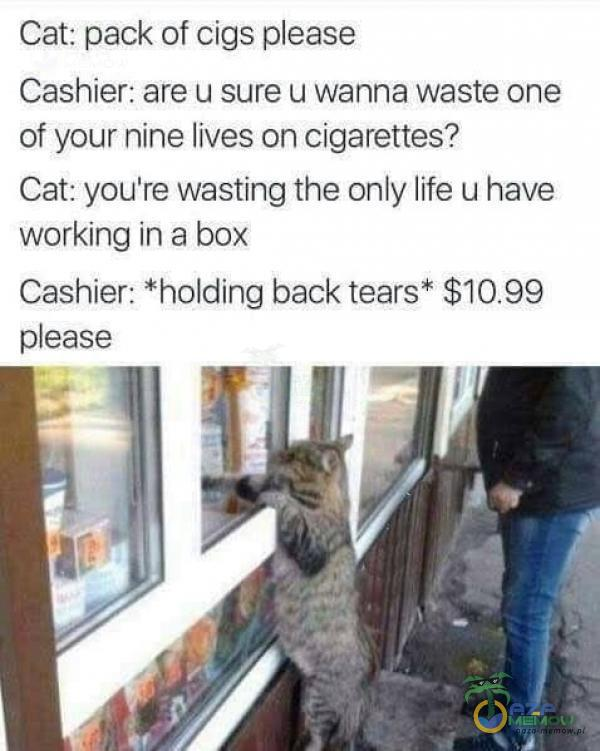 Cat: pack of cigs ease Cashier: are u sure u wanna waste one of your nine lives on cigarettes? Cat: you re wasting the only life u have working in a...