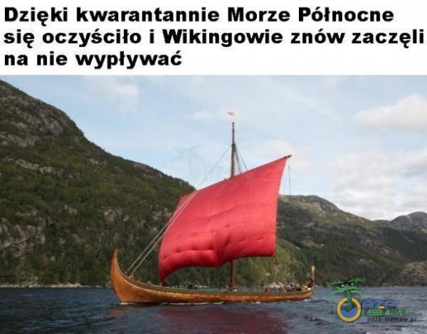 Dzięki kwarantannie Morze Północne się oczyściło i Wikingowie znów zaczęli na nie wypływać