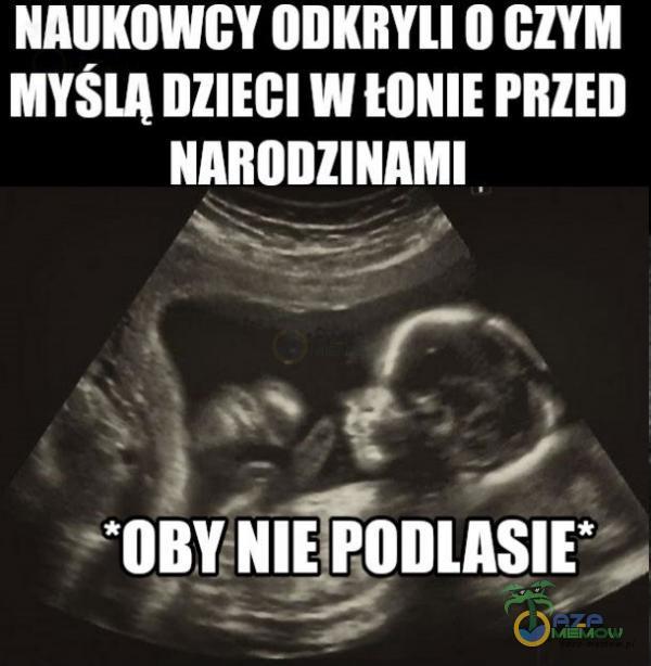 "NAUKOWGY IIIIKIłYlI ll DIY M MYSIA IllIEGI W MINIE PIIIEII NĄRIIIIIINAMI . ( _ I. — _ Ę ! ~""ninyNIE!!-uns!? , _ : ___—.Z- ;"