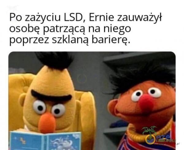 Po zażyciu LSD, Ernie zauważył osobę patrzącą na niego poprzez szklaną barierę.