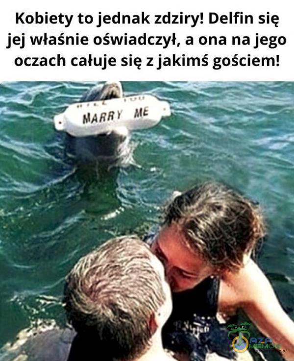 Kobiety to jednak zdziry! Delfin się jej właśnie oświadczył, a ona na jego oczach całuje się z jakimś gościem!