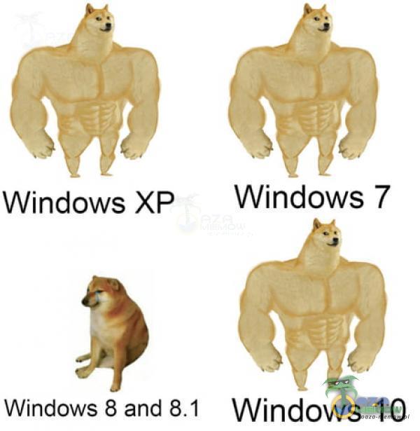 m © WindowsXP _ Windows 7 > Windows 8 and Windows 10