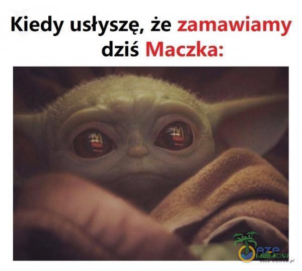 Kiedy usłyszę, że zamawiamy dziś Maczka: