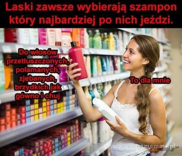Laski zawsze wybierają szampon który najbardziej po nich jeździ. emo,