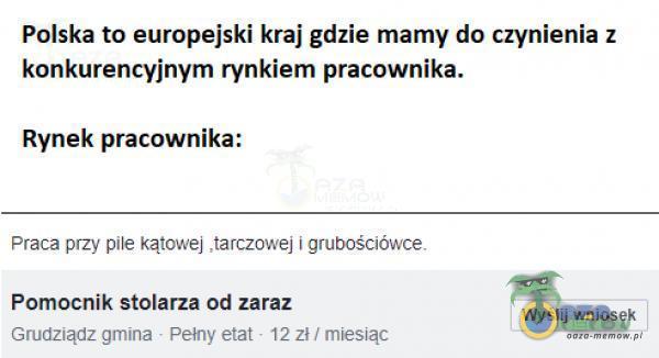 Polska to europejski kraj gdzie mamy da cżynienia z konkurencyjnym rynkiem pracownika: Ryńek,pracownika: WYST lis