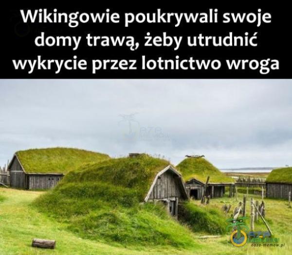 Wikingowie poukrywali swoje domy trawą, żeby utrudnić wykrycie przez lotnictwo wroga