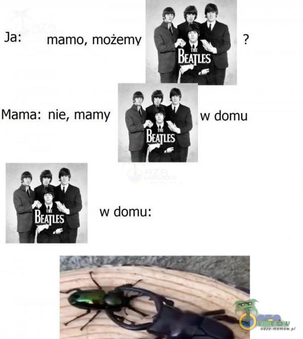 Ja: _ mamo, możemy ? a Mama: nie, mamy w domu BRR w domu: